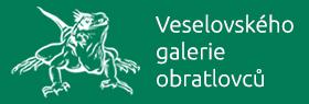 Banner Vgo 1b