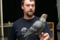 Effect Of Personality On A Bird's Ability To Categorize A Predator