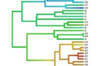 Nový Kurz Evoluční Analýza Běží V Zimním Semestru