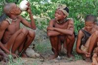 Evoluce Sdílení Potravy Napříč Lidskými Společnostmi