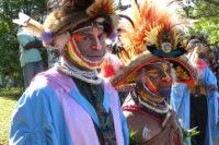 Zánik Domorodých Jazyků A Tradičních Znalostí Biologie V Jazykově Nejbohatší Zemi Světa